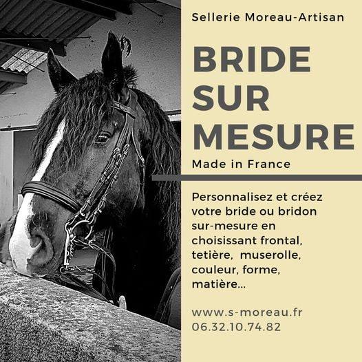 bride de dressage
